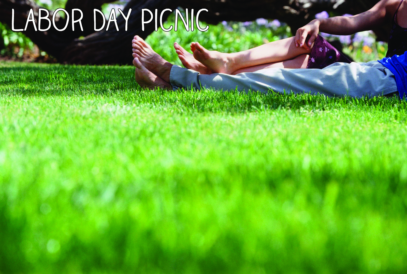labor day picnic pictures