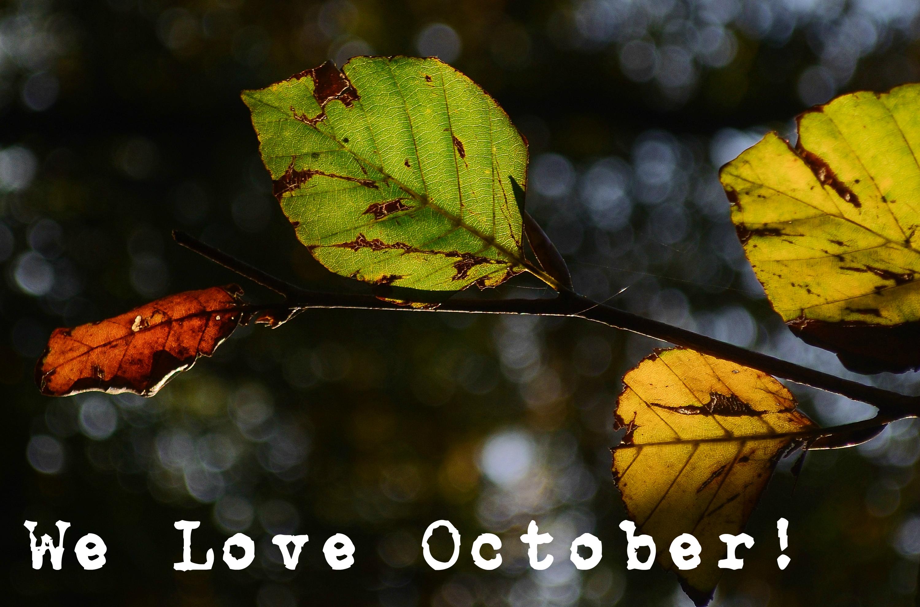 We Love October