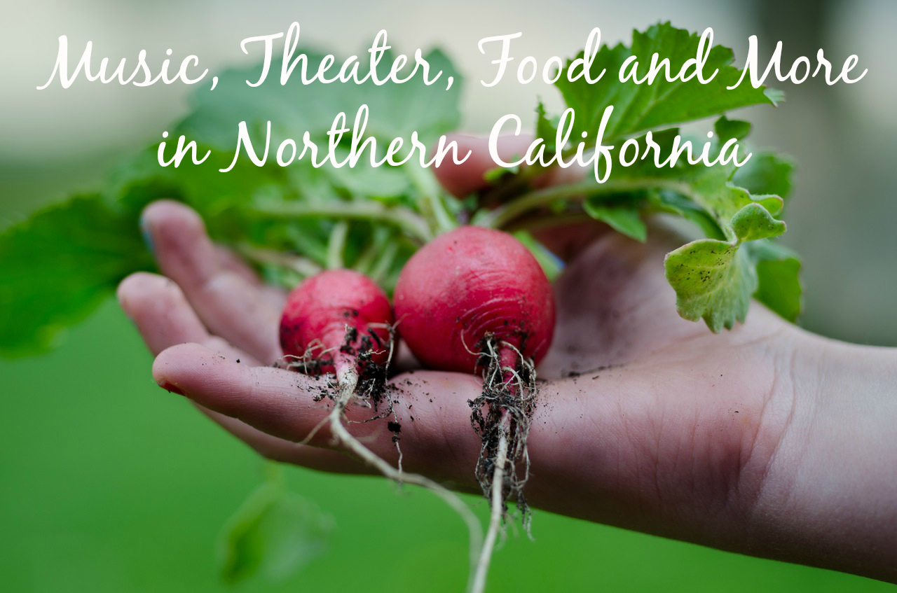 Music, Theater, Food and More in Northern California